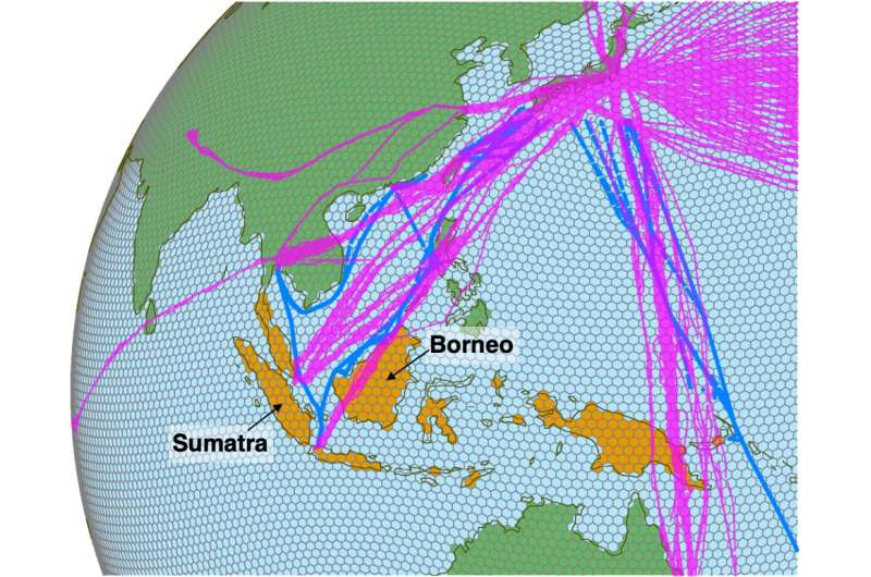 Extraordinary carbon emissions from El Nino-induced biomass burning estimated using Japanese aircraft and shipboard observations