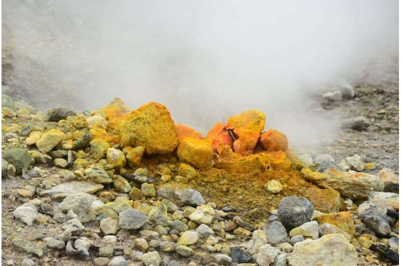 Extremophiles could hold clues for climate change-tackling technologies