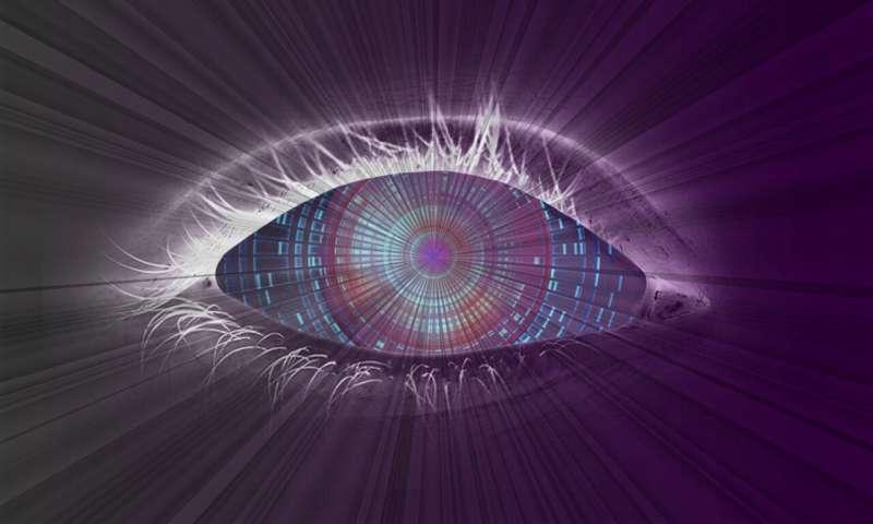 eye brain