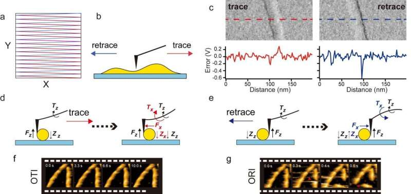 Faster and less-invasive atomic force microscopy for visualizing biomolecular systems
