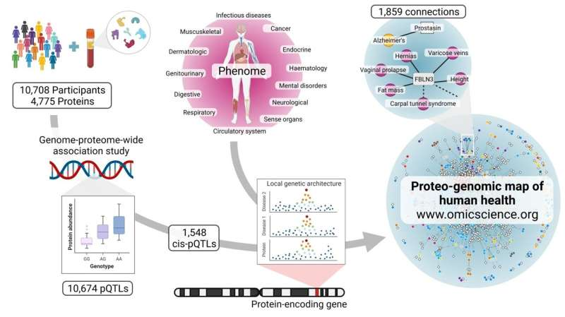 Filling the gaps: connecting genes to diseases through proteins