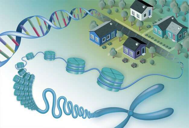Finding gene neighbors leads to new protein functions