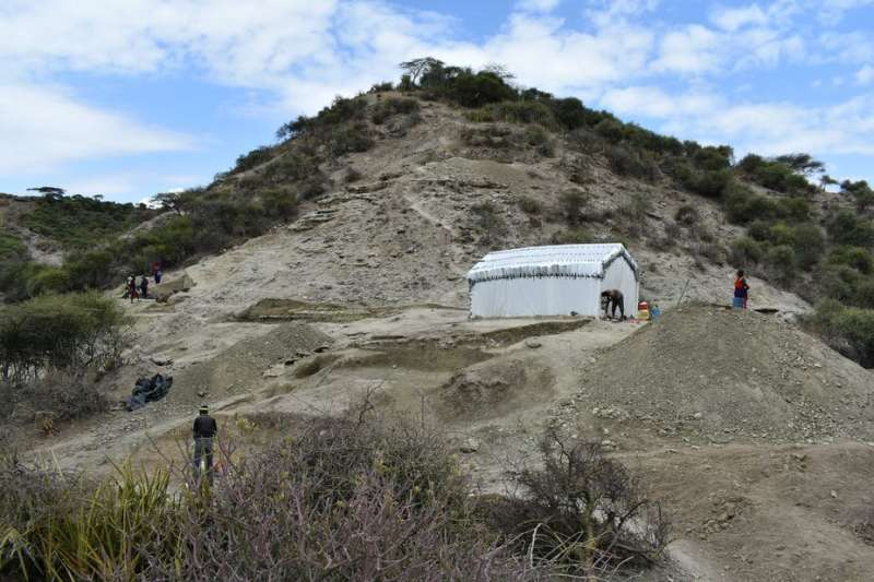 Finds in Tanzania's Olduvai Gorge reveal how ancient humans adapted to change