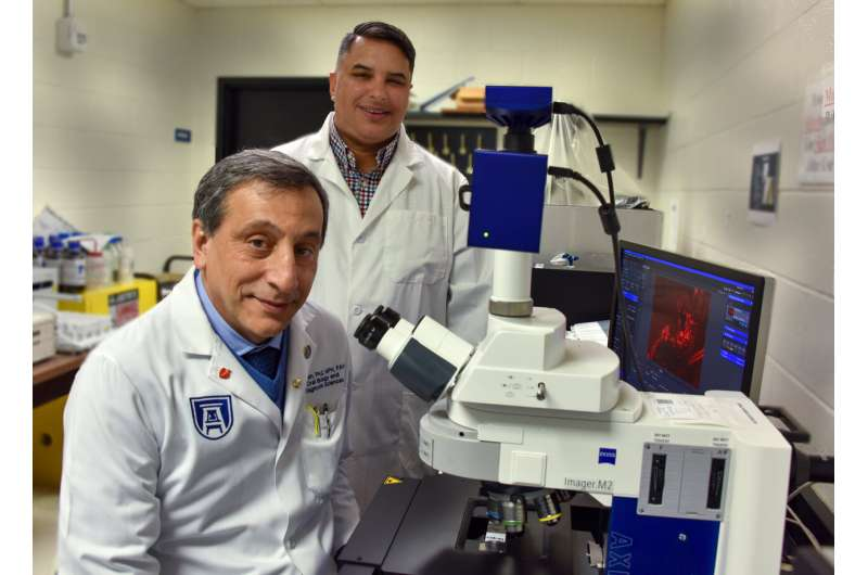 Fine tuning first-responder immune cells may reduce TBI damage