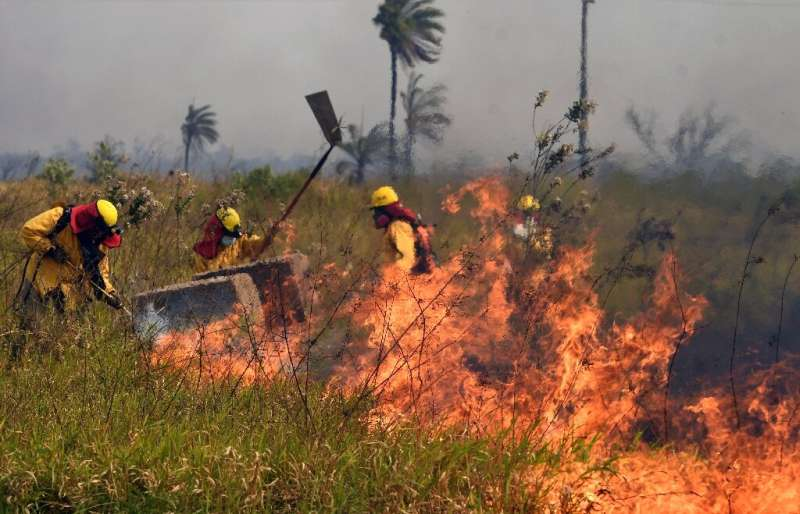 Firefighters battle flames close to the Santa Cruz airport in Bolivia on August 1, 2021