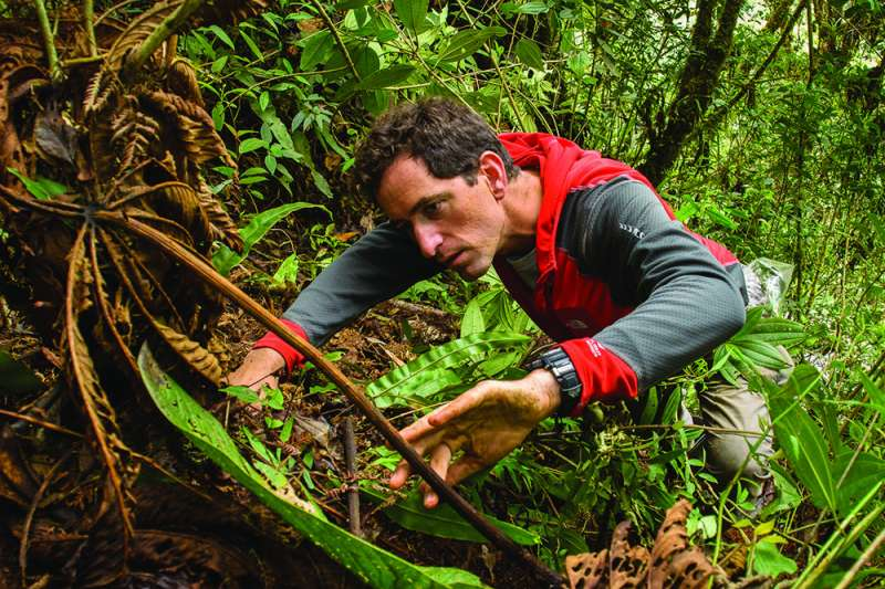 FIU researcher helps collect key data to establish 9 new protected areas in Peru