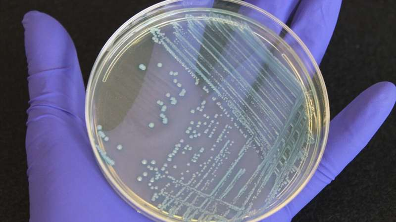 Food scientists create national atlas for deadly listeria