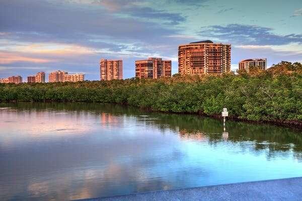 Forget massive seawalls—coastal wetlands offer the best storm protection money can buy