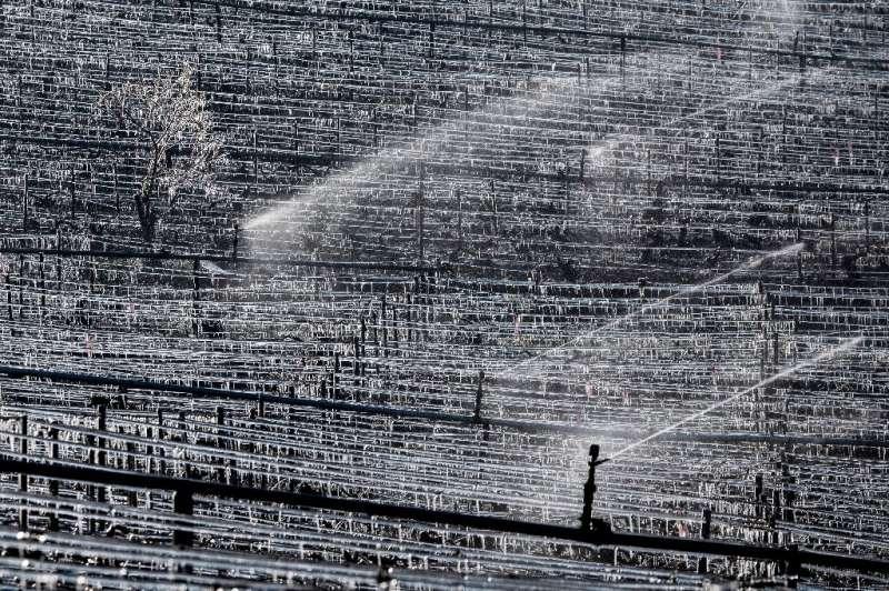 El ministro de Agricultura francés, Julien Denormandie, dice que la ola de frío ha sido & quot; particularmente difícil & quot;  para el sector ingenio