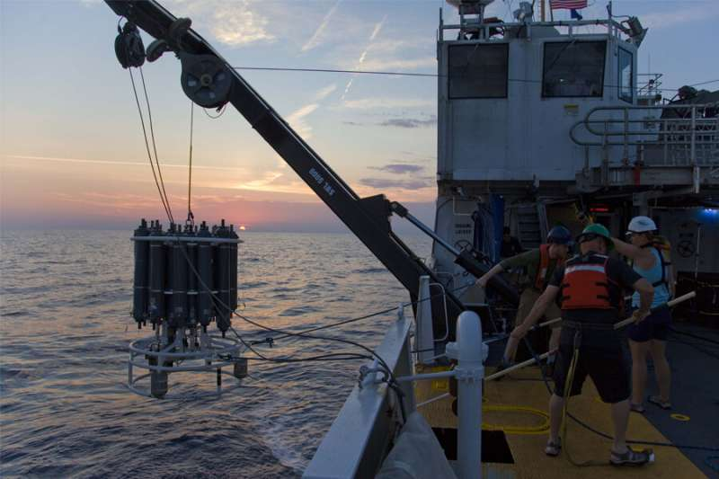FSU researchers find most nitrogen in Gulf of Mexico comes from coastal waters