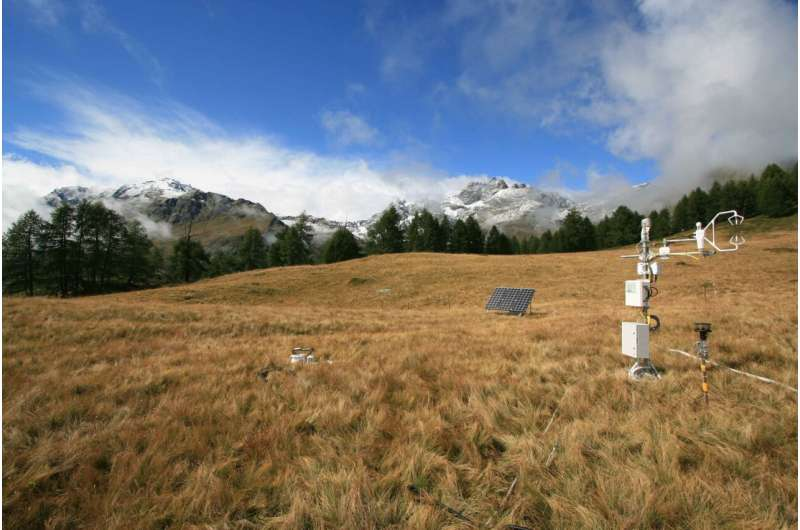 Functioning of terrestrial ecosystems is governed by three main factors