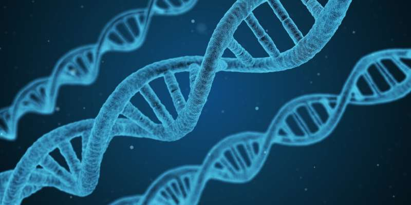 Genes hold key to heart disease prevalence in Africa