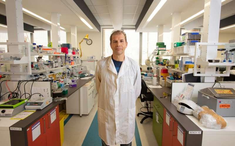 Genome study reveals East Asian coronavirus epidemic 20,000 years ago