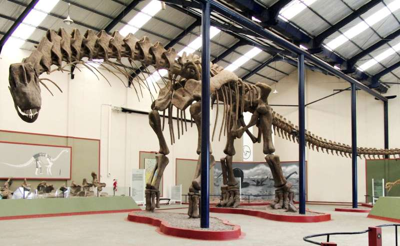 Gigantic dinosaur unearthed in Argentina could be largest land animal ever