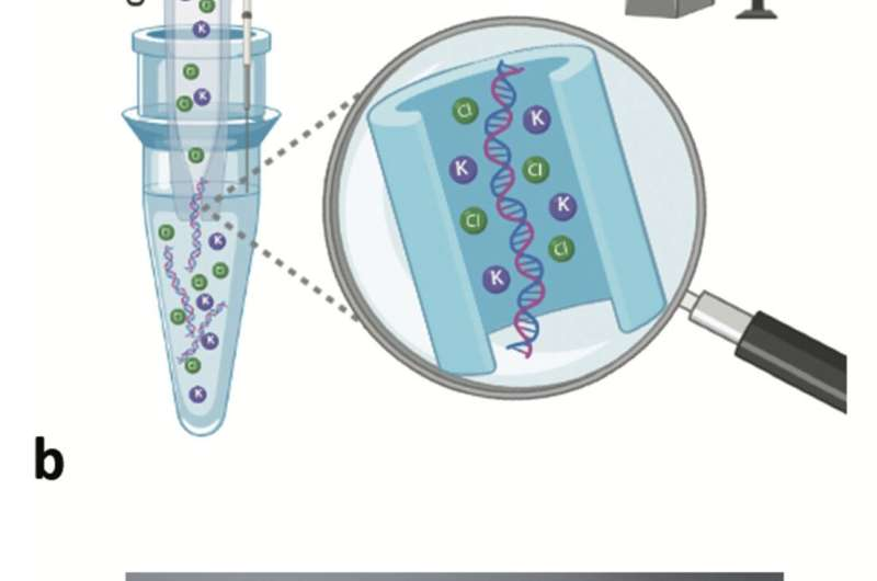 Glass nanopore pulls DNA like spaghetti through a needle