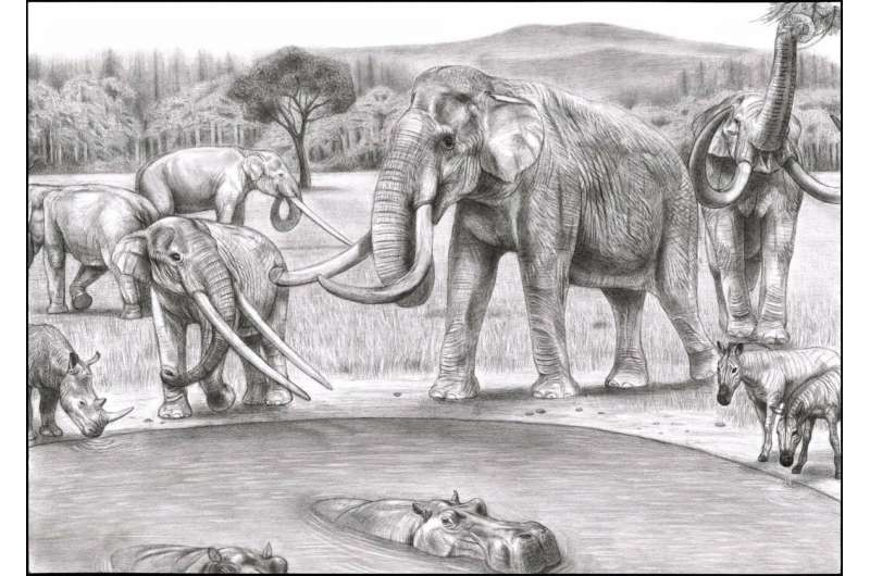 Global climate dynamics drove the decline of mastodonts and elephants, new study suggests