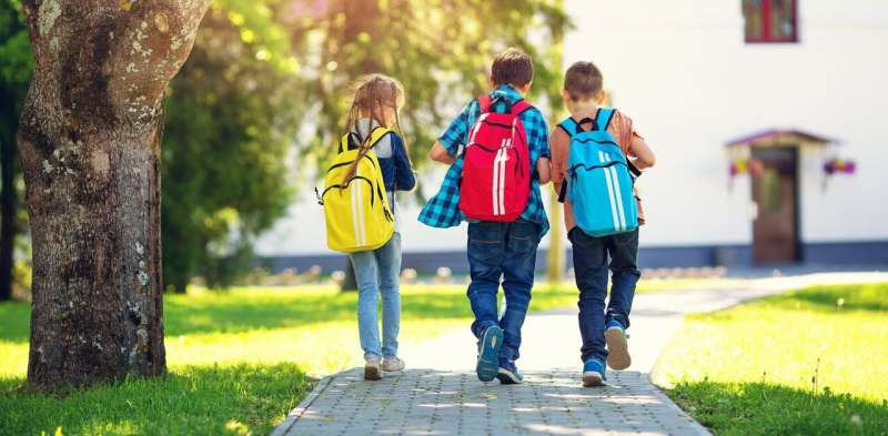 Green space around primary schools may improve students' academic performance
