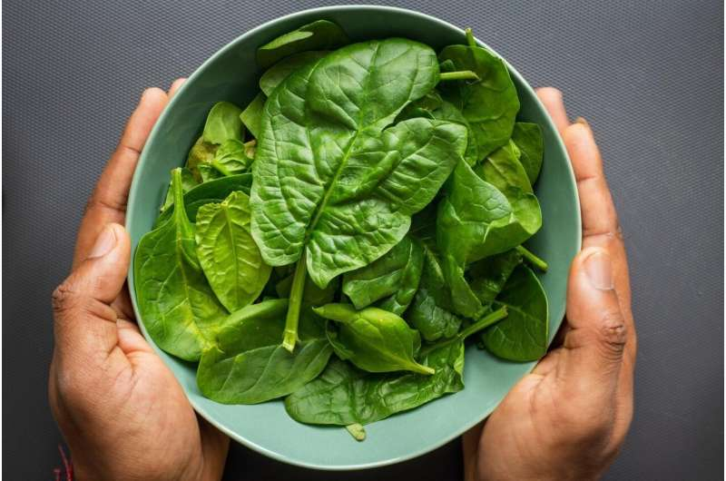 Green leafy vegetables essential for muscle strength