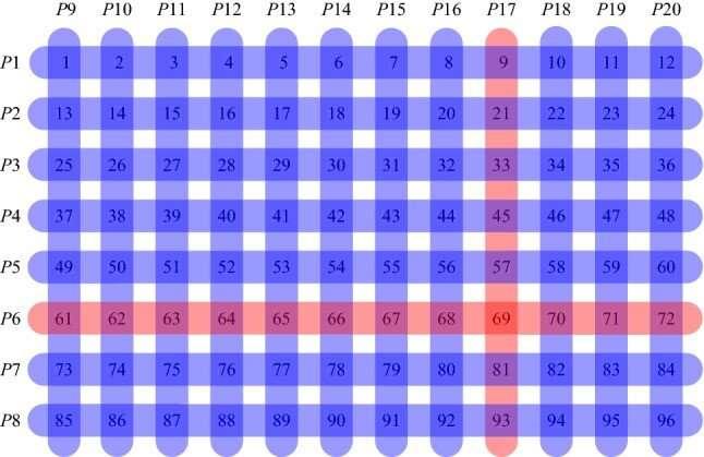 Group testing method developed for COVID-19
