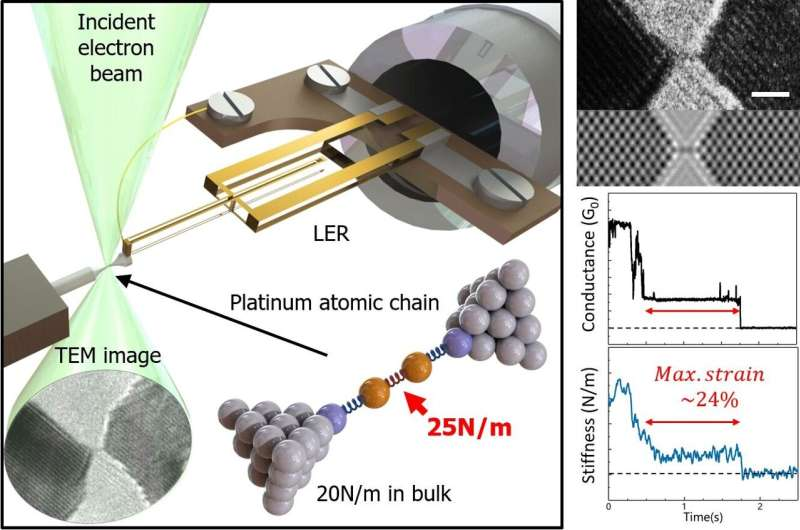 Hanging by a thread: imaging and probing chains of single atoms