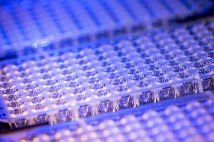 Harnessing next generation sequencing to detect SARS-CoV-2