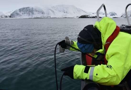 Los océanos saludables necesitan paisajes sonoros saludables