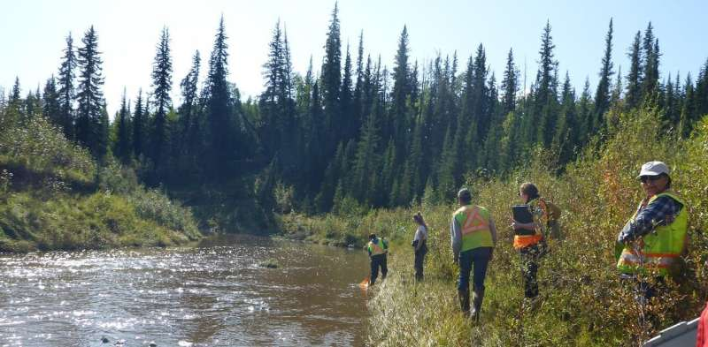 Healthy rivers: Communities use DNA tool to keep tabs on freshwater quality