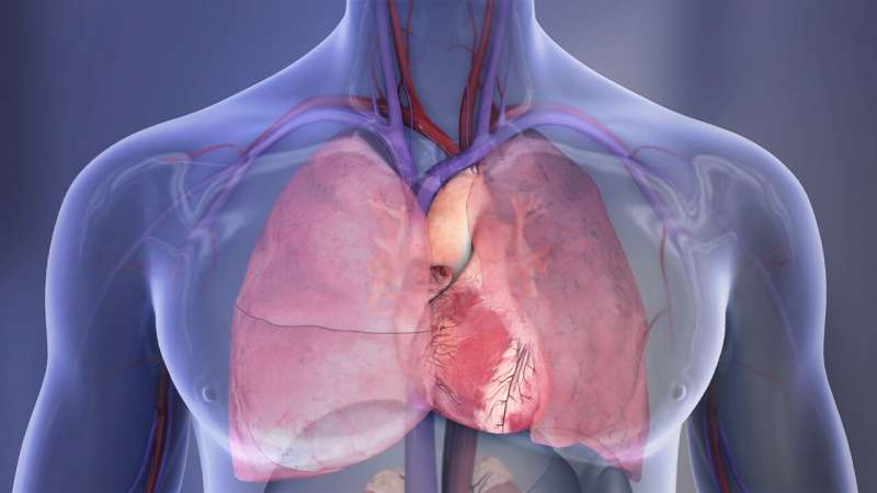 Heart disease likely to remain #1 killer in U.S. indefinitely due to long-term COVID-19 impact