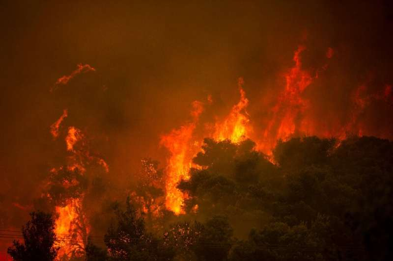 Heatwaves, drought conditions, and reduced soil moisture amplified by global warming have seen unprecedented fires in the northe