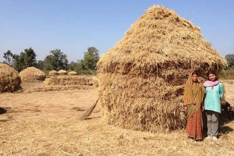 Ayudando a los pequeños agricultores de la India