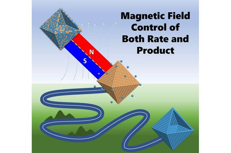 High magnetic fields control both rate and product of chemical reactions