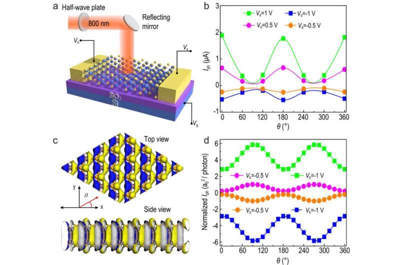 High performance polarization sensitive photodetectors on 2D β-InSe