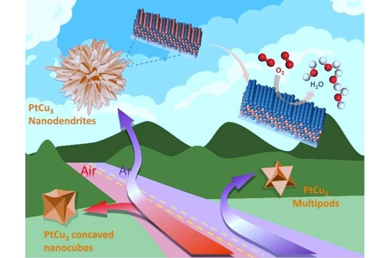 High index surfaces-exposed PtCu3@Pt3Cu@Pt nanodendrites as ORR electrocatalyst