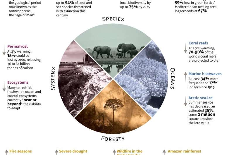 Highlights of a landmark Intergovernmental Panel on Climate Change (IPCC) draft report on the effects of a warming planet on nat