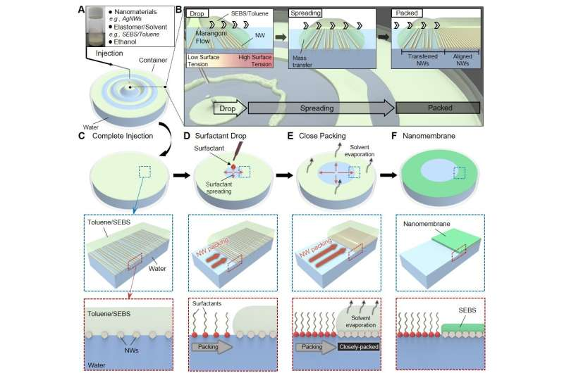 Highly conductive and elastic nanomembrane for skin electronics