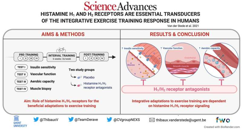 Histamine suppressing drugs found to reduce benefits of exercise