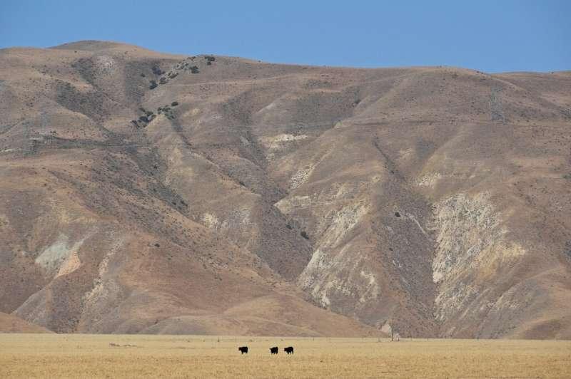 La sequía histórica amenaza a las granjas de California que suministran gran parte de los alimentos a los EE. UU.