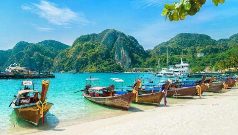 Hospital superbug traced to remote island beach