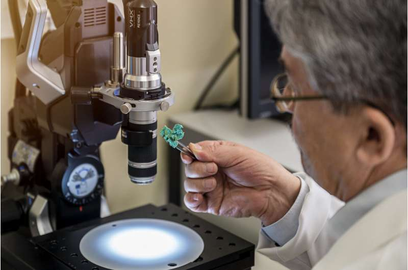 How a bath sponge becomes a bio-based industrial filter
