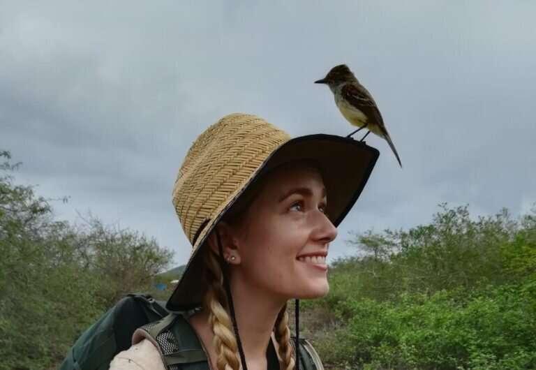 How Galápagos finches evade a parasitic fly