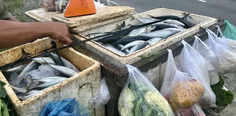 How small-scale seafood supply chains adapt to COVID-19 disruptions