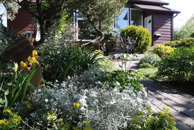 Cómo los huertos urbanos pueden impulsar la biodiversidad y hacer que las ciudades sean más sostenibles