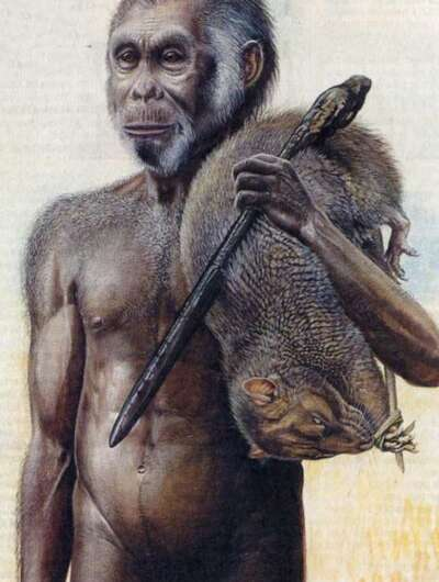 Humans weren't always agents of destruction when arriving on uninhabited islands