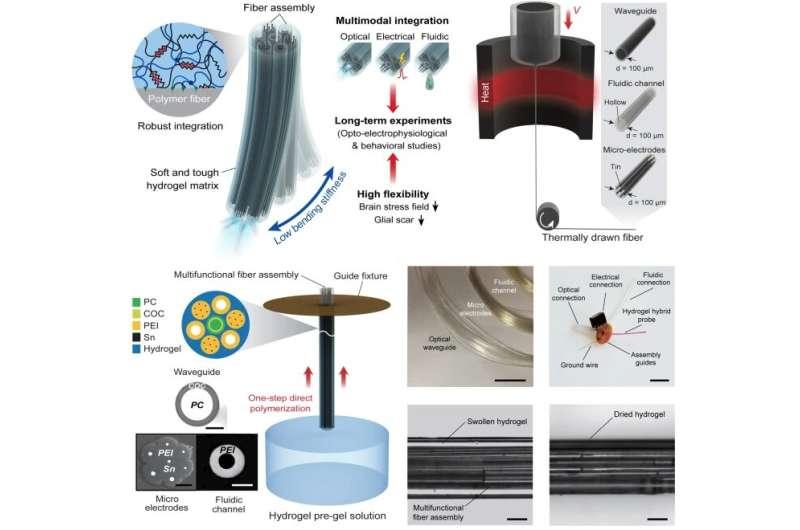Hydrogel-based flexible brain-machine interface