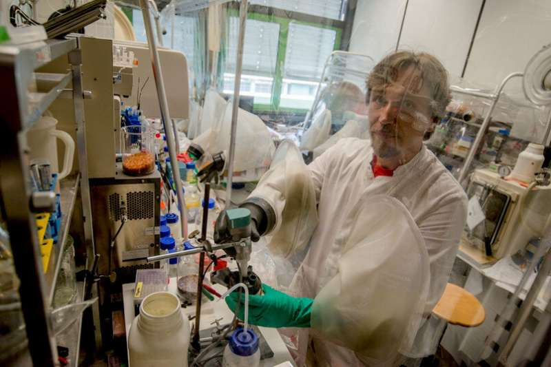 Hydrogen-producing enzyme protects itself against oxygen