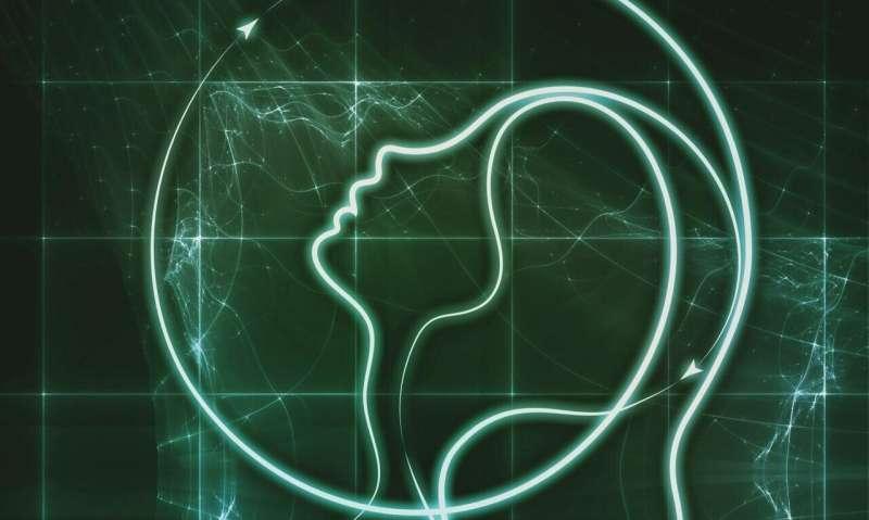 Identifying strategies to advance research on traumatic brain injury's effect on women