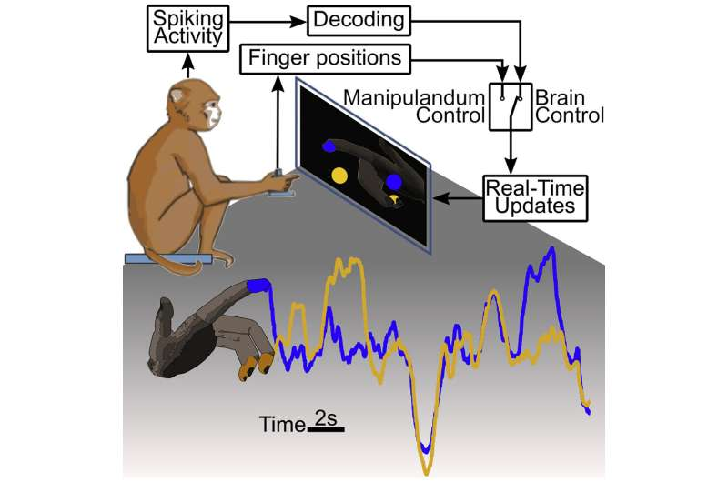 Individual finger control for advanced prostheses demonstrated in primates