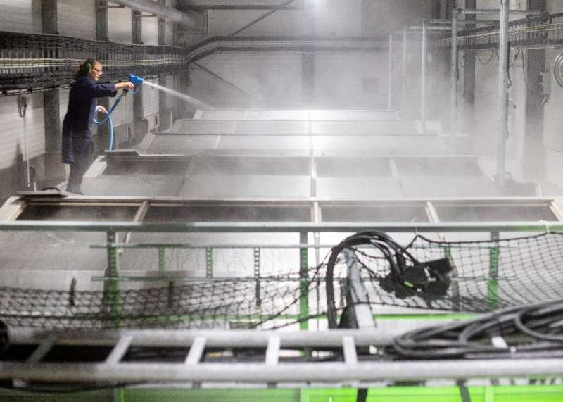 Indoor salmon farms avoid problems see in sea or river cages, including mounds of sludge piling up under them.