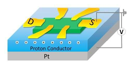 Inducing and tuning spin interactions in layered material by inserting iron atoms, protons