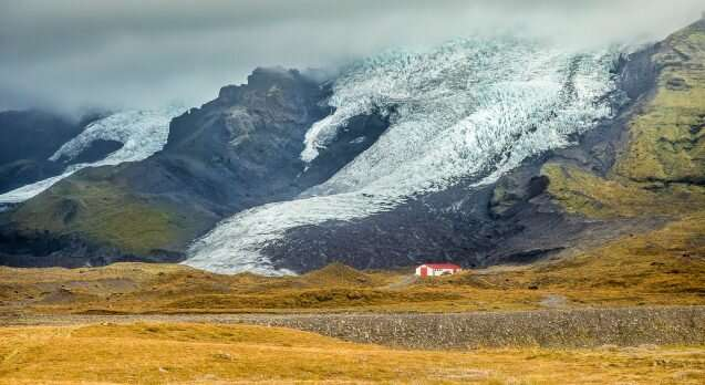 In Iceland, melting glaciers give way to plant life